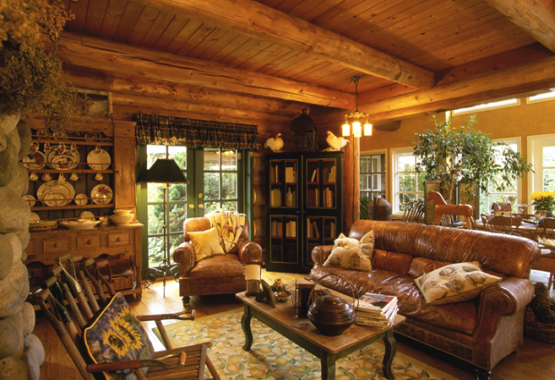 Log home living casual cottage for Log living room